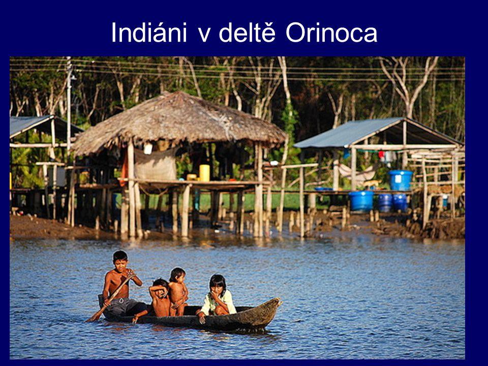Indiáni v deltě Orinoca