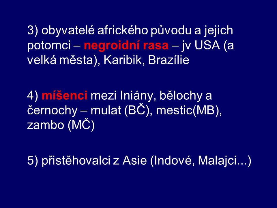 3) obyvatelé afrického původu a jejich potomci – negroidní rasa – jv USA (a velká města), Karibik, Brazílie 4) míšenci mezi Iniány, bělochy a černochy