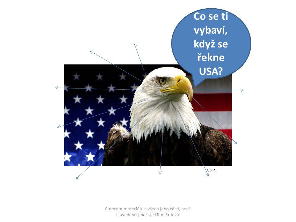 Obr.1 Co se ti vybaví, když se řekne USA