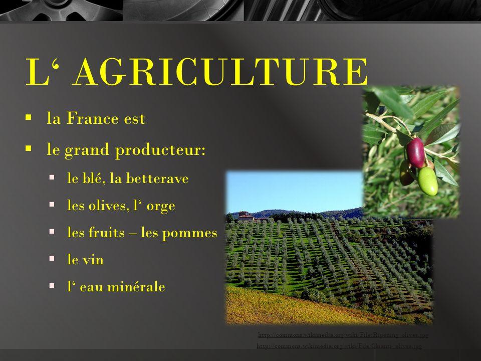L' AGRICULTURE  la France est  le grand producteur:  le blé, la betterave  les olives, l' orge  les fruits – les pommes  le vin  l' eau minérale http://commons.wikimedia.org/wiki/File:Chianti_olives.jpg http://commons.wikimedia.org/wiki/File:Ripening_olives.jpg
