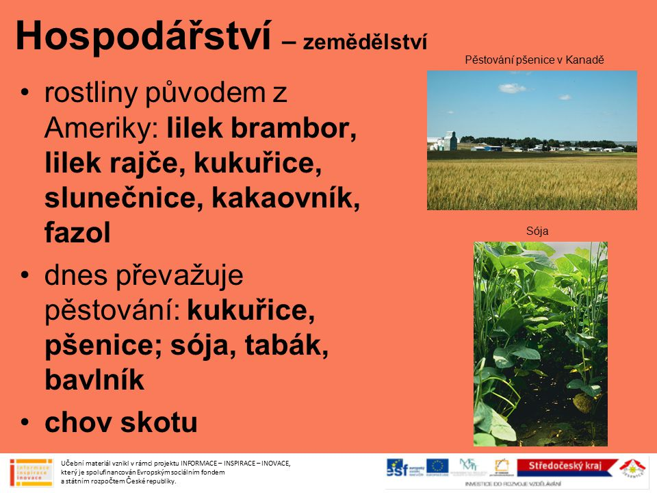 Hospodářství – zemědělství rostliny původem z Ameriky: lilek brambor, lilek rajče, kukuřice, slunečnice, kakaovník, fazol dnes převažuje pěstování: ku