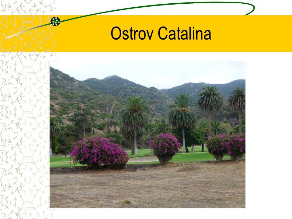 Ostrov Catalina