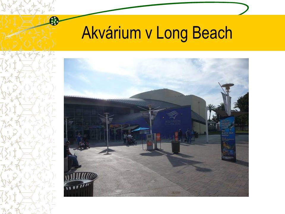 Akvárium v Long Beach