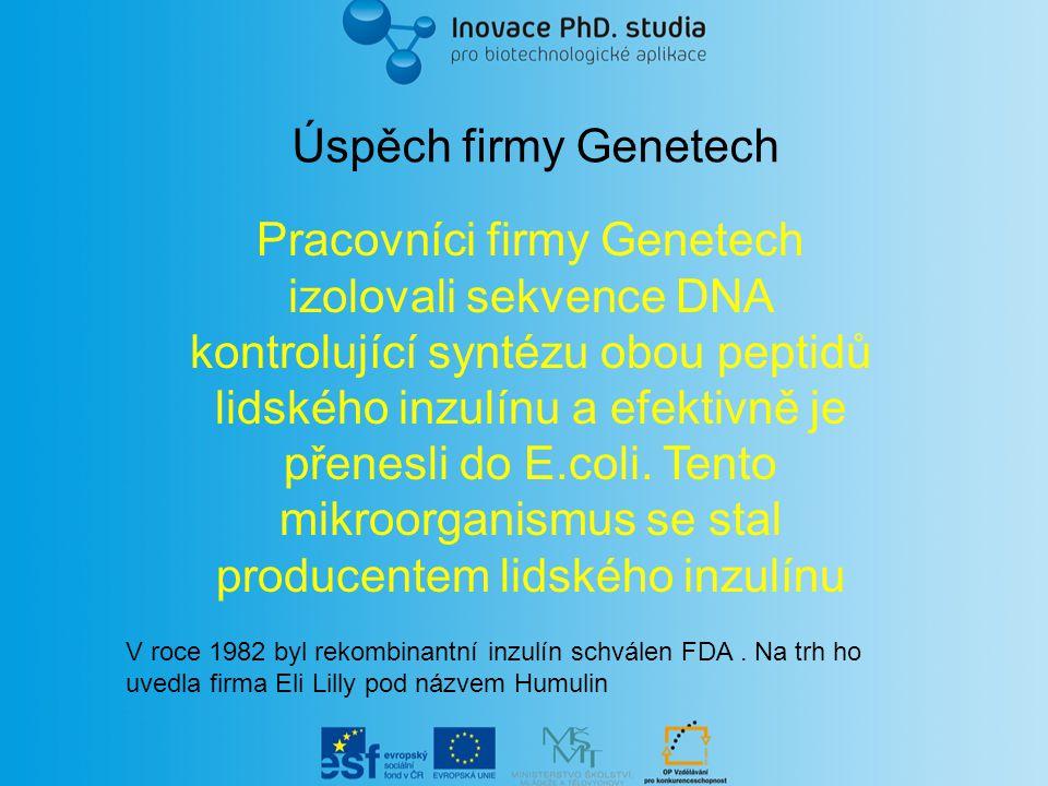 Úspěch firmy Genetech Pracovníci firmy Genetech izolovali sekvence DNA kontrolující syntézu obou peptidů lidského inzulínu a efektivně je přenesli do E.coli.