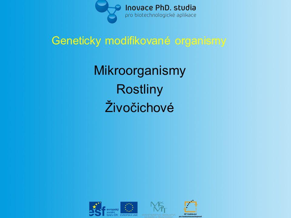 Geneticky modifikované organismy Mikroorganismy Rostliny Živočichové