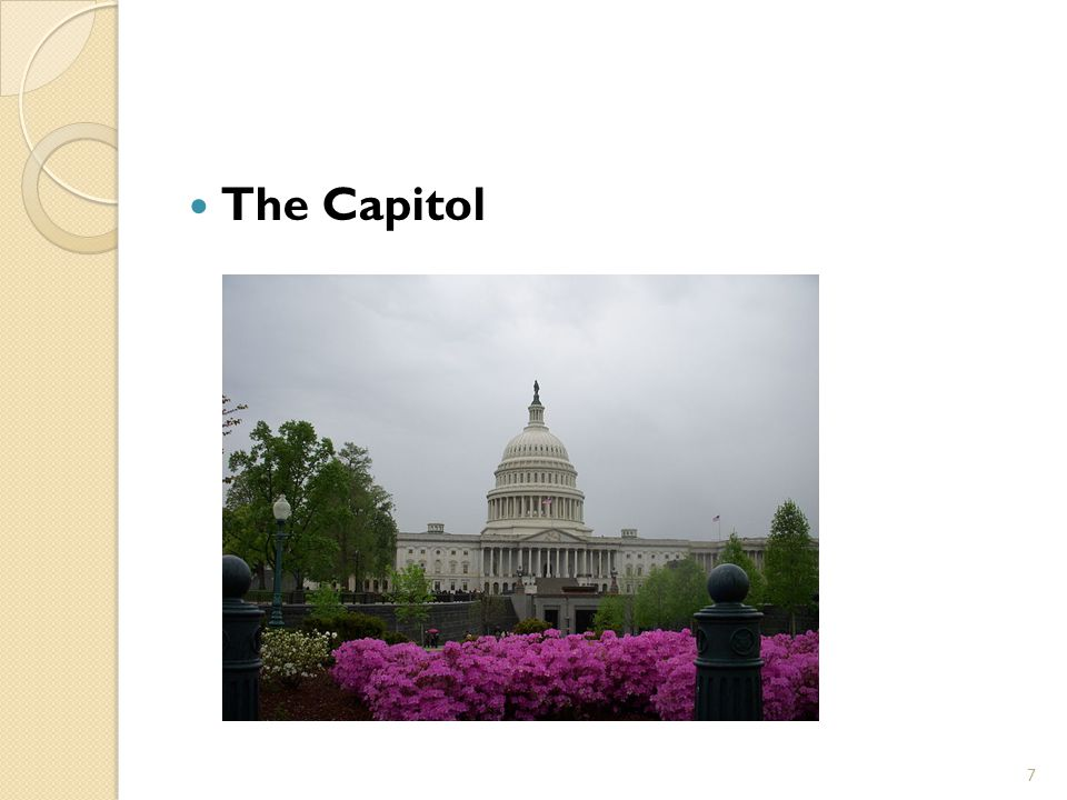 The Capitol 7