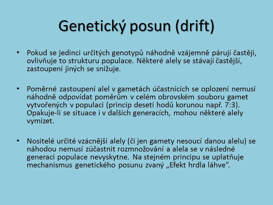 Genetický posun (drift) Pokud se jedinci určitých genotypů náhodně vzájemně párují častěji, ovlivňuje to strukturu populace. Některé alely se stávají