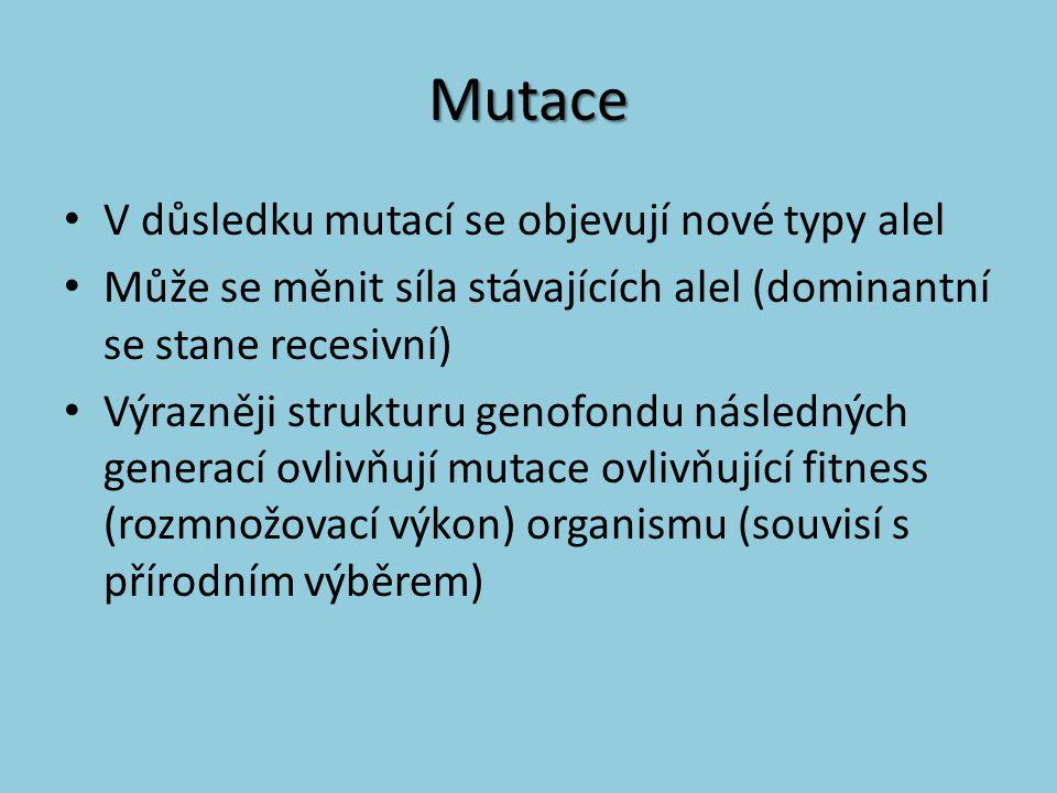 Mutace V důsledku mutací se objevují nové typy alel Může se měnit síla stávajících alel (dominantní se stane recesivní) Výrazněji strukturu genofondu
