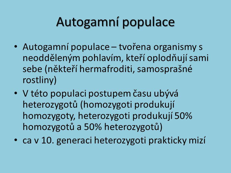 Autogamní populace Autogamní populace – tvořena organismy s neodděleným pohlavím, kteří oplodňují sami sebe (někteří hermafroditi, samosprašné rostlin