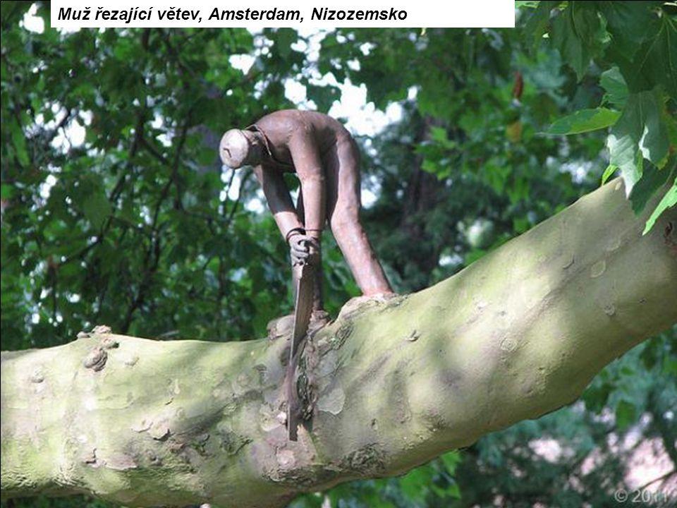 Muž řezající větev, Amsterdam, Nizozemsko