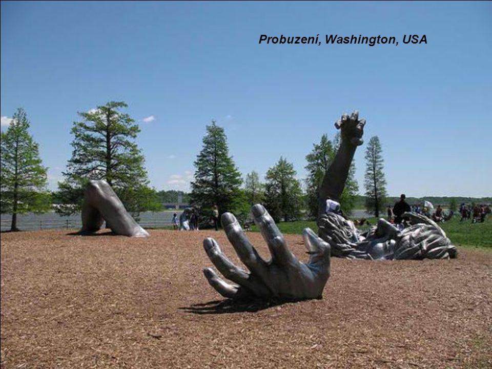 Probuzení, Washington, USA