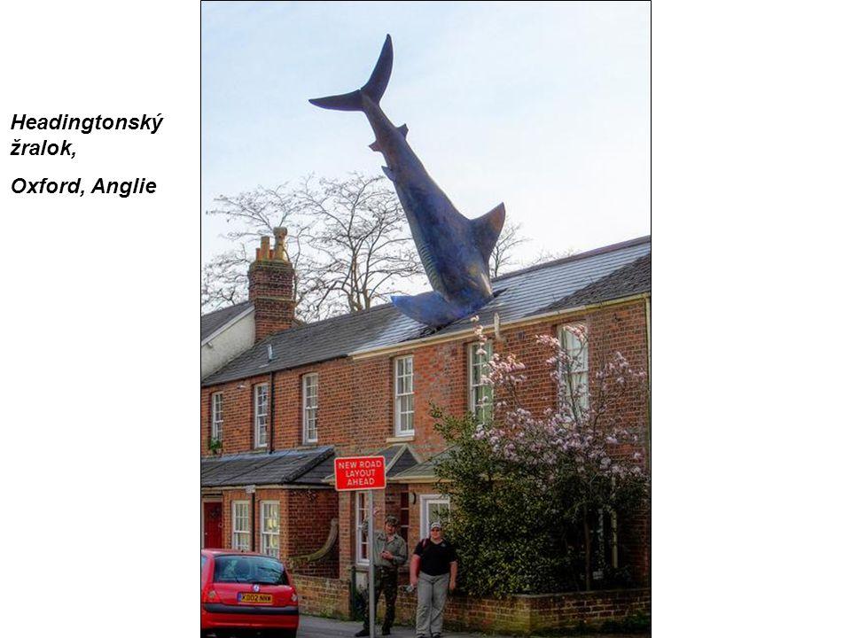 Headingtonský žralok, Oxford, Anglie