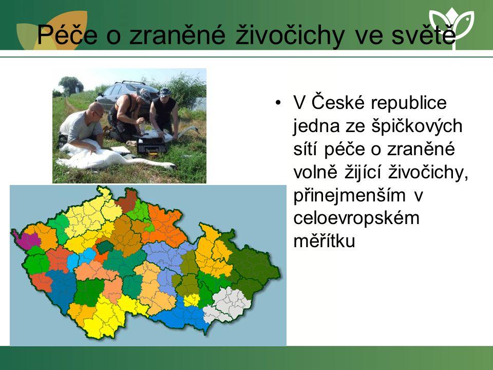 Péče o zraněné živočichy ve světě V České republice jedna ze špičkových sítí péče o zraněné volně žijící živočichy, přinejmenším v celoevropském měřítku