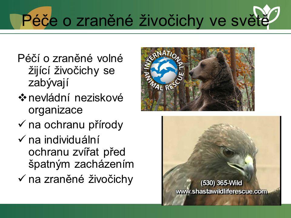 Péče o zraněné živočichy ve světě Péčí o zraněné volné žijící živočichy se zabývají  nevládní neziskové organizace na ochranu přírody na individuální ochranu zvířat před špatným zacházením na zraněné živočichy