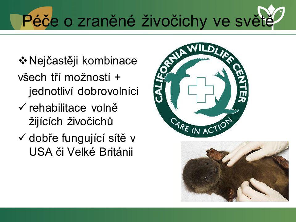 Péče o zraněné živočichy ve světě  Nejčastěji kombinace všech tří možností + jednotliví dobrovolníci rehabilitace volně žijících živočichů dobře fungující sítě v USA či Velké Británii