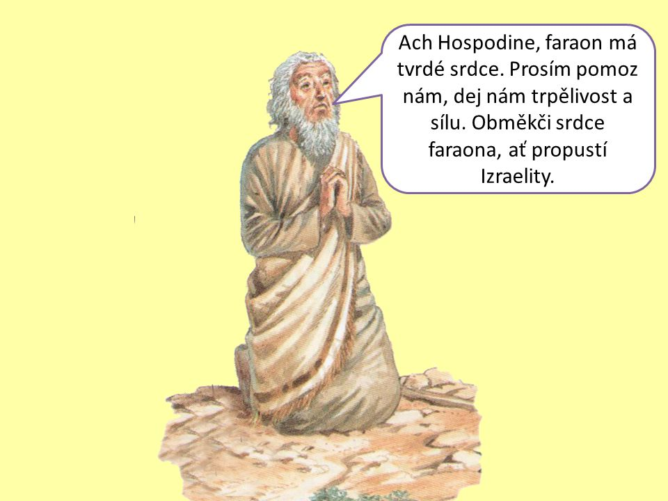 Ach Hospodine, faraon má tvrdé srdce. Prosím pomoz nám, dej nám trpělivost a sílu.