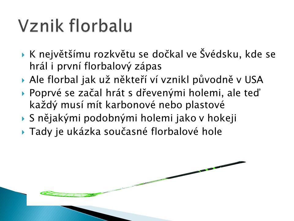  K největšímu rozkvětu se dočkal ve Švédsku, kde se hrál i první florbalový zápas  Ale florbal jak už někteří ví vznikl původně v USA  Poprvé se za