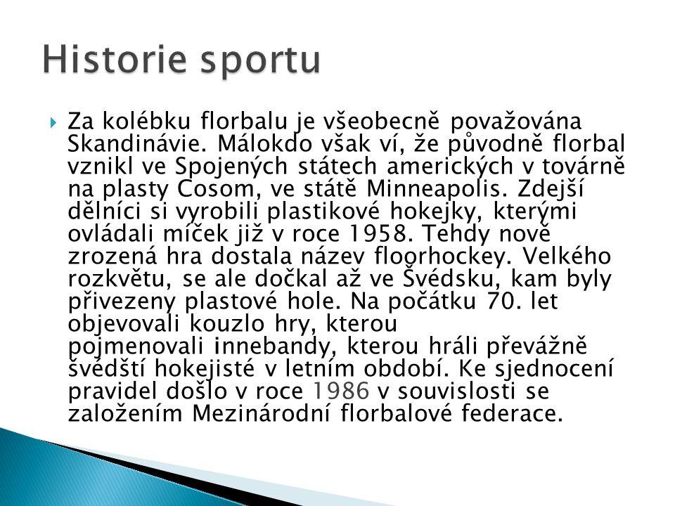  Za kolébku florbalu je všeobecně považována Skandinávie. Málokdo však ví, že původně florbal vznikl ve Spojených státech amerických v továrně na pla