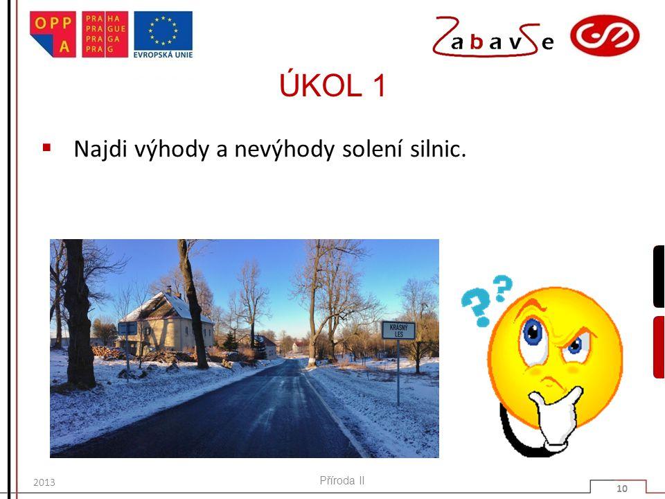 ÚKOL 1  Najdi výhody a nevýhody solení silnic. Příroda II 10 2013