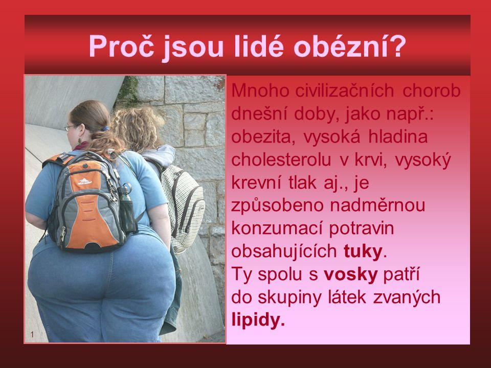 Proč jsou lidé obézní.