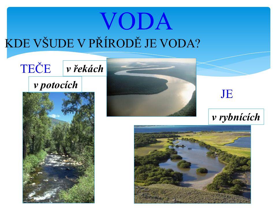 KDE VŠUDE V PŘÍRODĚ JE VODA? VODA TEČE v potocích v řekách v rybnících JE