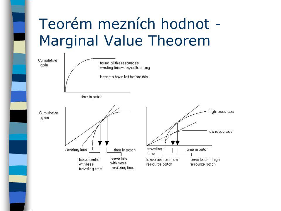 Teorém mezních hodnot - Marginal Value Theorem