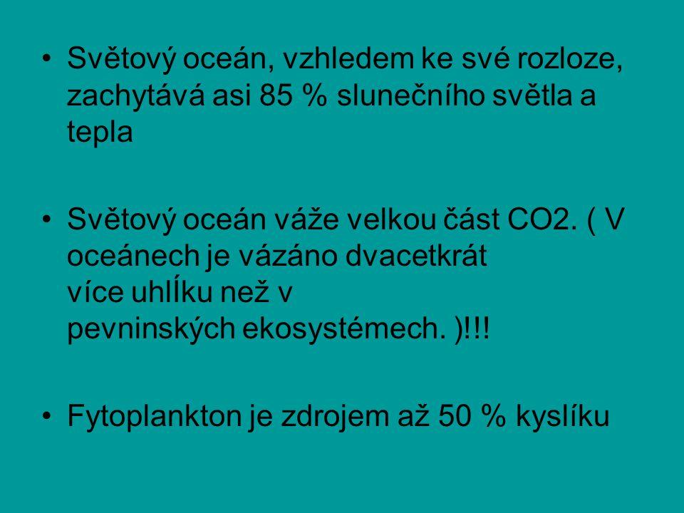 Světový oceán, vzhledem ke své rozloze, zachytává asi 85 % slunečního světla a tepla Světový oceán váže velkou část CO2.