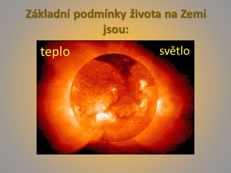 Základní podmínky života na Zemi jsou: teplo světlo