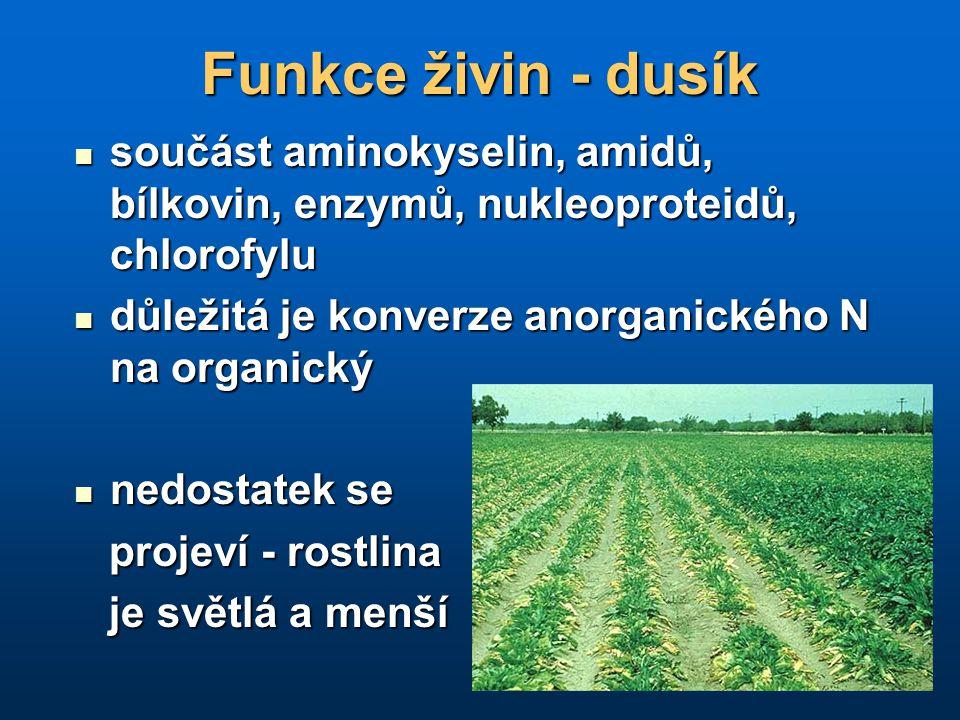 Funkce živin - dusík součást aminokyselin, amidů, bílkovin, enzymů, nukleoproteidů, chlorofylu součást aminokyselin, amidů, bílkovin, enzymů, nukleopr