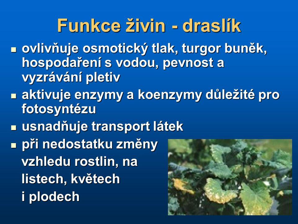 Funkce živin - draslík ovlivňuje osmotický tlak, turgor buněk, hospodaření s vodou, pevnost a vyzrávání pletiv ovlivňuje osmotický tlak, turgor buněk,