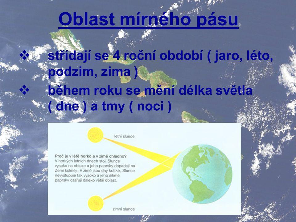 Oblast mírného pásu  střídají se 4 roční období ( jaro, léto, podzim, zima )  během roku se mění délka světla ( dne ) a tmy ( noci )