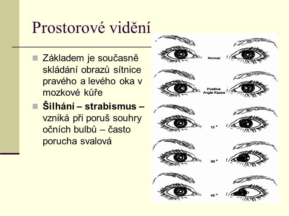 Prostorové vidění Základem je současně skládání obrazů sítnice pravého a levého oka v mozkové kůře Šilhání – strabismus – vzniká při poruš souhry očních bulbů – často porucha svalová