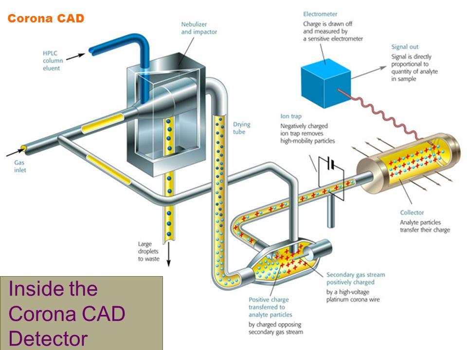 Inside the Corona CAD Detector Corona CAD