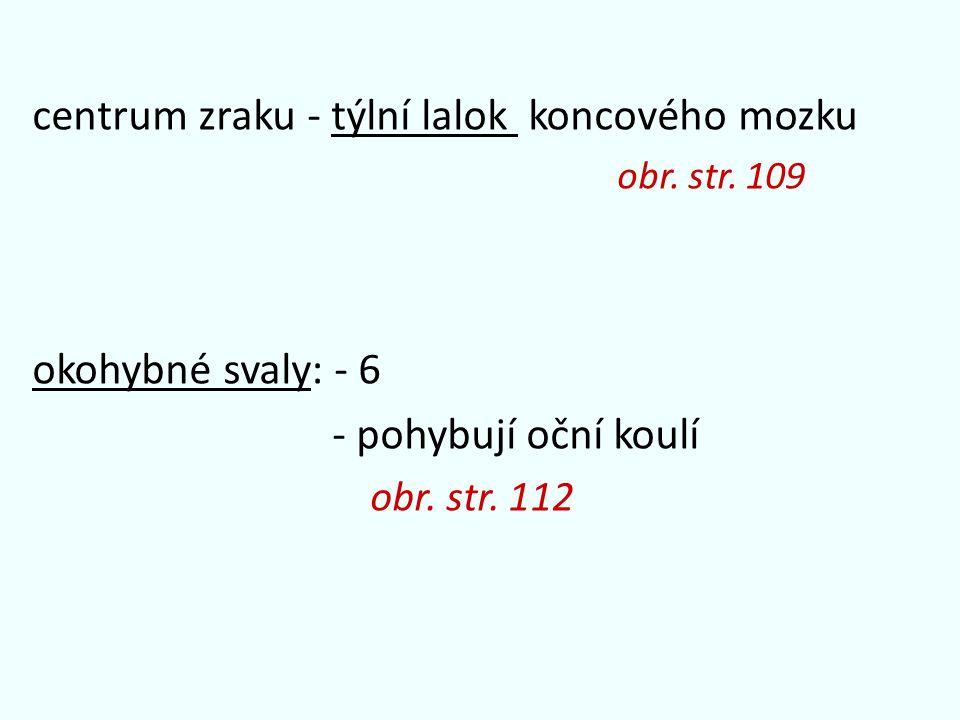 centrum zraku - týlní lalok koncového mozku obr. str.