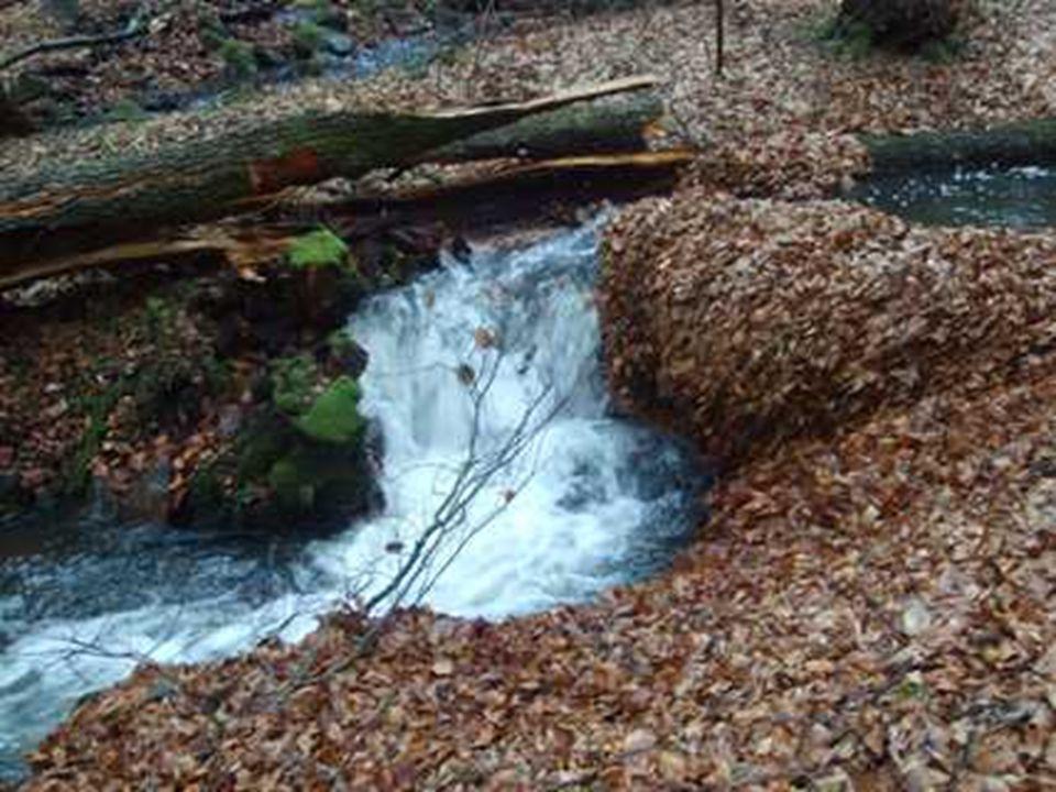 Koloběh vody K oběhu dochází účinkem sluneční energie a zemské gravitace.