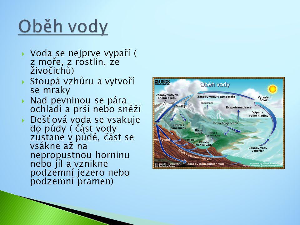  Voda se nejprve vypaří ( z moře, z rostlin, ze živočichů)  Stoupá vzhůru a vytvoří se mraky  Nad pevninou se pára ochladí a prší nebo sněží  Dešťová voda se vsakuje do půdy ( část vody zůstane v půdě, část se vsákne až na nepropustnou horninu nebo jíl a vznikne podzemní jezero nebo podzemní pramen)