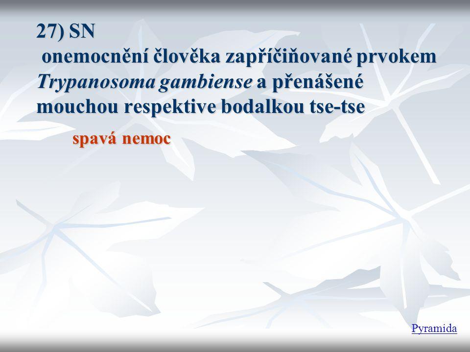 27) SN onemocnění člověka zapříčiňované prvokem Trypanosoma gambiense a přenášené mouchou respektive bodalkou tse-tse spavá nemoc Pyramida