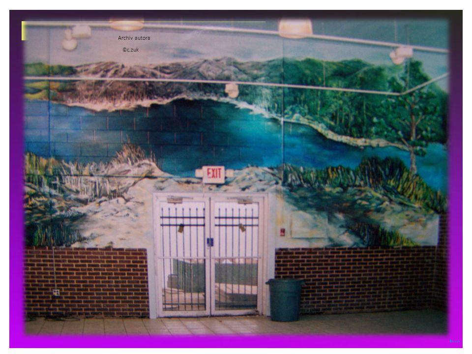 ©c.zuk světlo, stín kontrastem barvy a plošné kontury Archiv autora © c.zuk USA – stát Arkansas – město Rogers Výmalba stěn obchodního centra © c.zuk Archiv autora