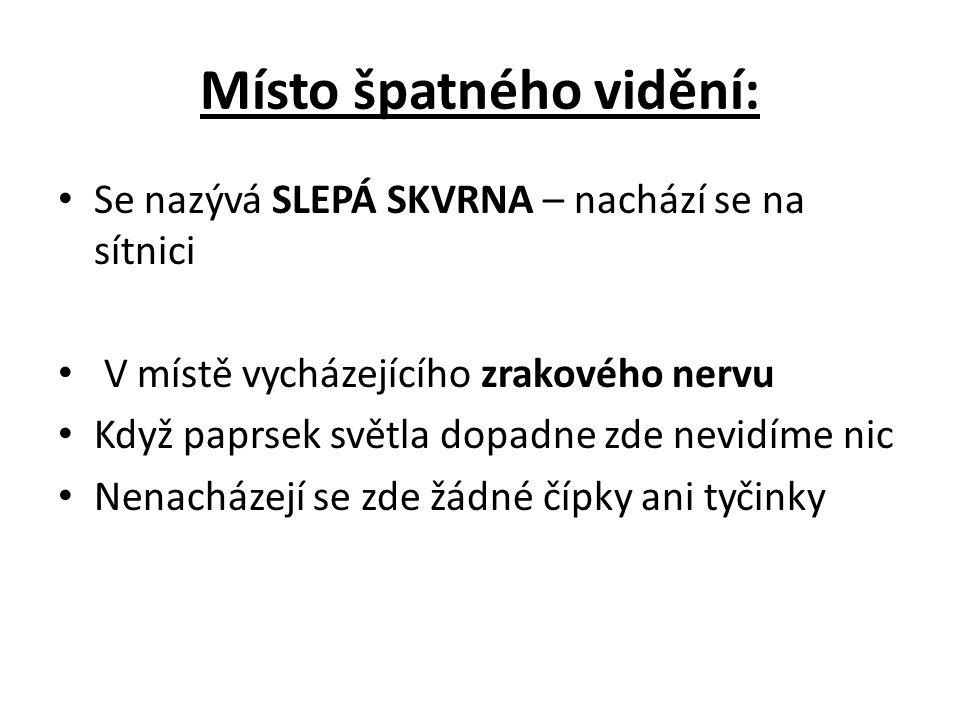 Místo špatného vidění: Se nazývá SLEPÁ SKVRNA – nachází se na sítnici V místě vycházejícího zrakového nervu Když paprsek světla dopadne zde nevidíme n