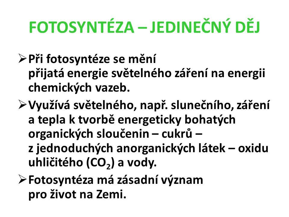 FOTOSYNTÉZA – JEDINEČNÝ DĚJ  Při fotosyntéze se mění přijatá energie světelného záření na energii chemických vazeb.