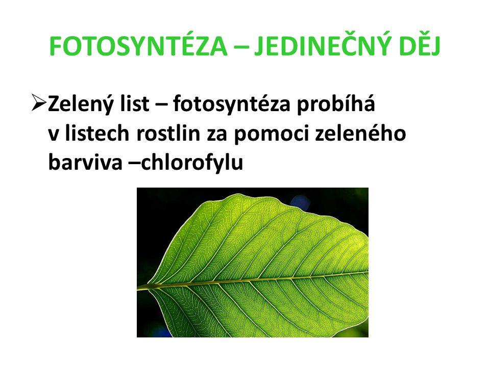 FOTOSYNTÉZA – JEDINEČNÝ DĚJ  Zelený list – fotosyntéza probíhá v listech rostlin za pomoci zeleného barviva –chlorofylu
