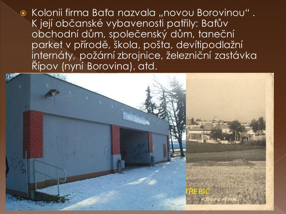 """ Kolonii firma Baťa nazvala """"novou Borovinou"""". K její občanské vybavenosti patřily: Baťův obchodní dům, společenský dům, taneční parket v přírodě, šk"""