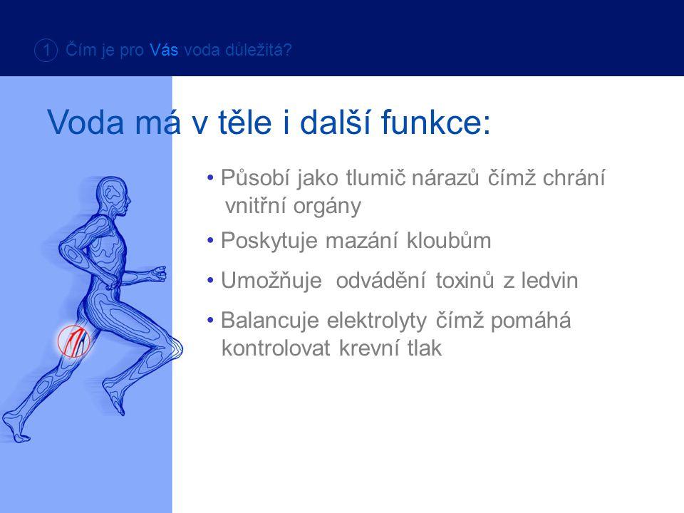 Česká norma dovoluje přítomnost určitého množství olova, norma EU nikoli.