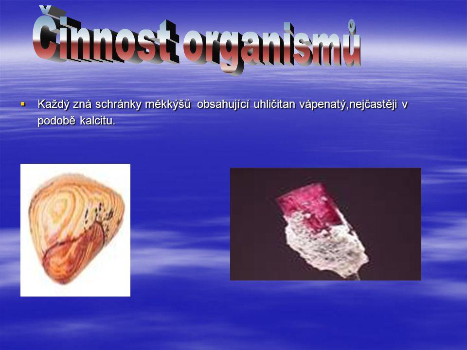  Každý zná schránky měkkýšů obsahující uhličitan vápenatý,nejčastěji v podobě kalcitu.