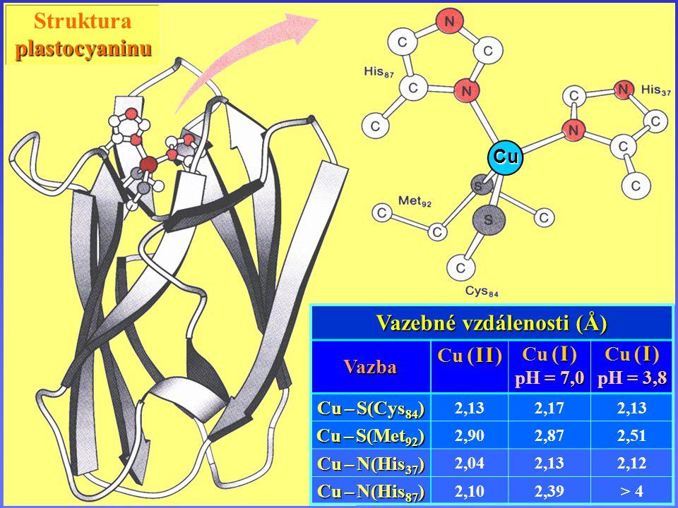 Komplexy mědi Strukturaplastocyaninu Cu Vazebné vzdálenosti (Å) Vazba I I Cu ( I I ) I Cu ( I ) 7,0 pH = 7,0 I Cu ( I ) 3,8 pH = 3,8 Cu – S(Cys 84 ) 2,132,172,13 Cu – S(Met 92 ) 2,902,872,51 Cu – N(His 37 ) 2,042,132,12 Cu – N(His 87 ) 2,102,39> 4