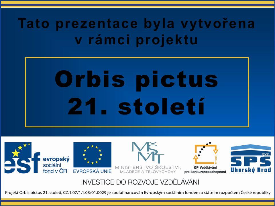 Nespojité regulátory OB21-OP-EL-AUT-KRA-M-3-017 Ing. Petr Krajča