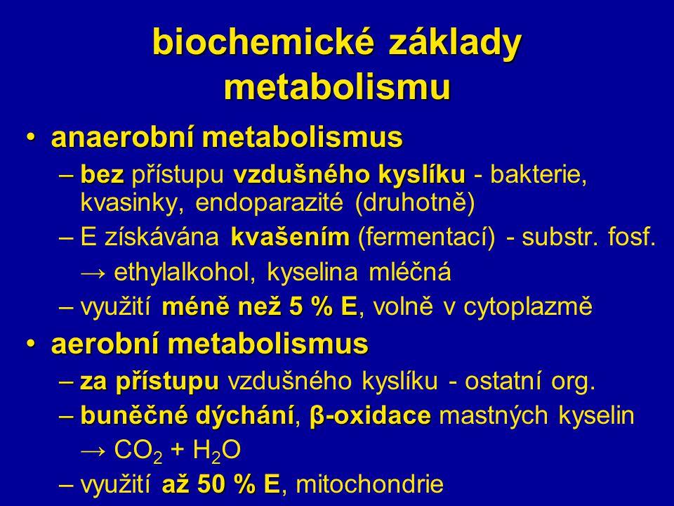 biochemické základy metabolismu anaerobní metabolismusanaerobní metabolismus –bezvzdušného kyslíku –bez přístupu vzdušného kyslíku - bakterie, kvasinky, endoparazité (druhotně) kvašením –E získávána kvašením (fermentací) - substr.