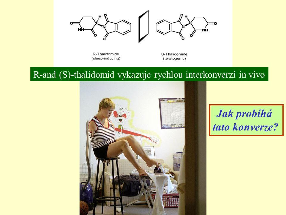 R-and (S)-thalidomid vykazuje rychlou interkonverzi in vivo Jak probíhá tato konverze?