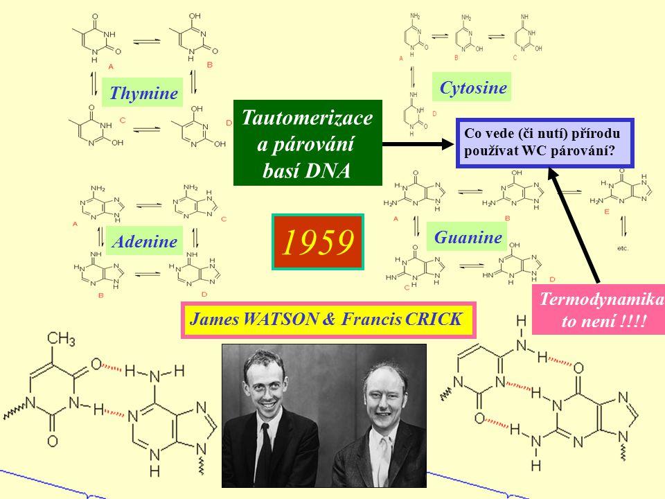 Adenine Guanine Cytosine Thymine Tautomerizace a párování basí DNA James WATSON & Francis CRICK 1959 Co vede (či nutí) přírodu používat WC párování? T