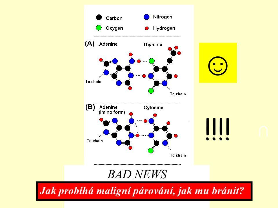 BAD NEWS ☺ ∩ !!!! Jak probíhá maligní párování, jak mu bránit?